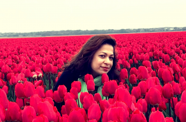 Why We Chose to Study in Holland