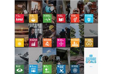 Wittenborg Sets to Pick up Pace to Act on UN SDGs & Societal Impact