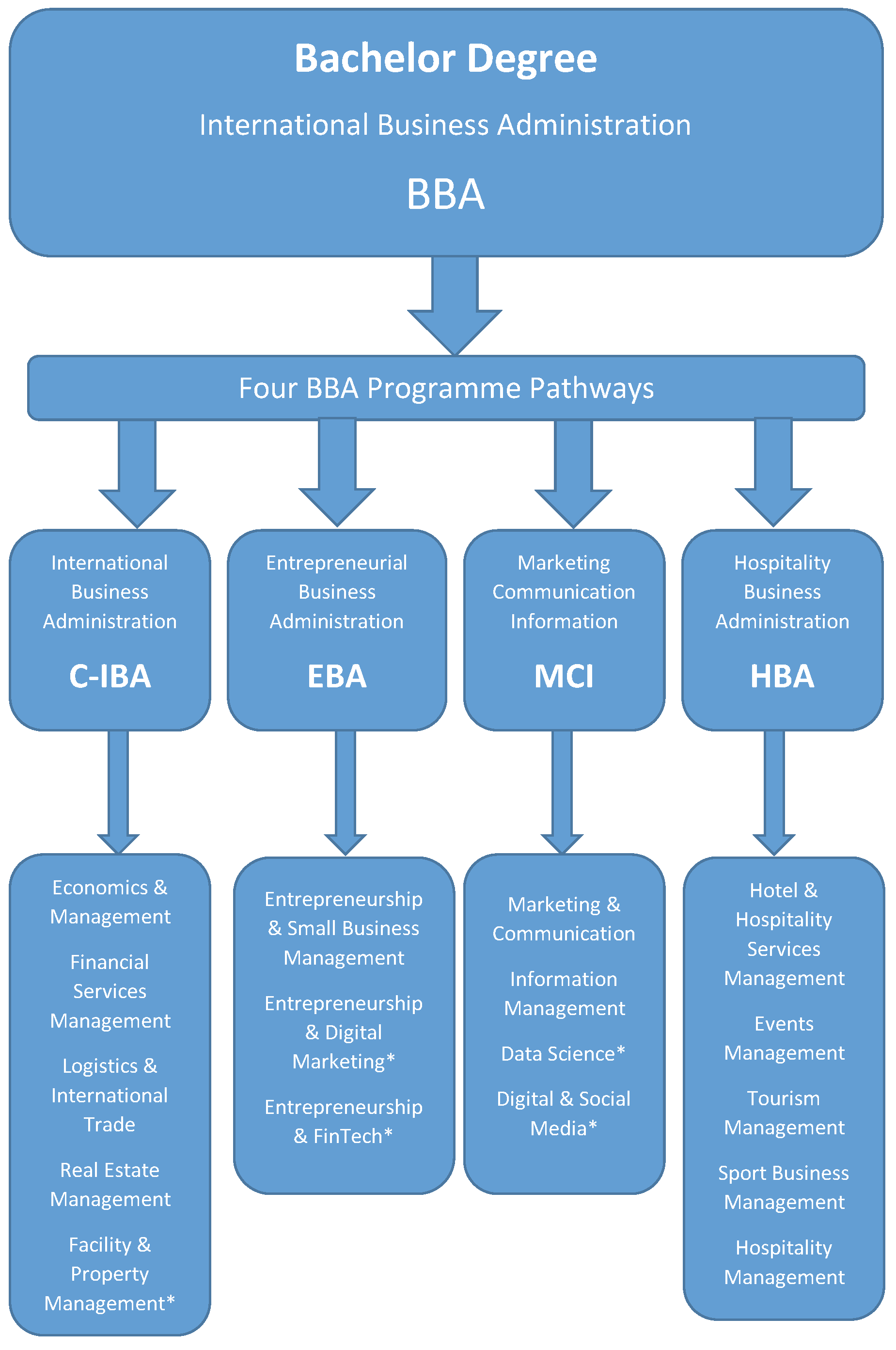 4 Pathways of BBA Programme
