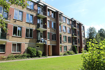 Wittenborg Ahead of the Pack as Dutch Student Union Calls for More Student Housing
