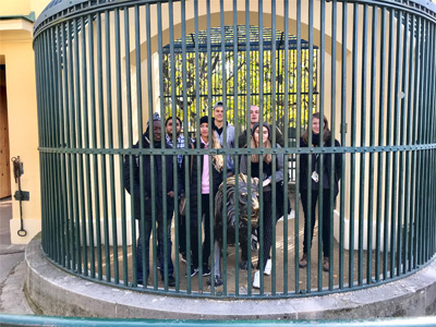 Wittenborg Vienna Students Visit Oldest Zoo in the World